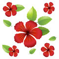 Seamless background design with hibiscus flowers Royalty Free Stock Photo