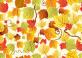 Seamless background with different autumn leaves Royalty Free Stock Photography
