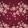 Seamless background maroon with branch of cherry t tree beautiful vector japanese tree sakura blossom elegant Royalty Free Stock Images