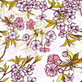Seamless background pattern with blossoming sakura cherry or elements vector illustration Stock Photo