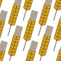 Seamless background pattern of an ear of wheat a ripe golden in a repeat motif in square format for agriculture industry design Royalty Free Stock Photo