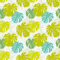 Seamless background pattern leafs tropical liana Royalty Free Stock Images