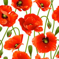 Seamless background: poppy Royalty Free Stock Photos