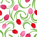 Vector Seamless background with red and pink tulip Royalty Free Stock Photo