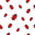 Seamless background with shiny ladybirds Stock Images