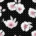 Seamless background with white and pink wild rose flowers on a black background with white polka dots