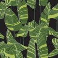 Seamless banana leaf pattern background. Simple green drawing line art illustration.