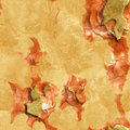 Seamless bark-like pattern Stock Photo
