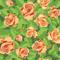 Seamless beatifull roses illustration of a Royalty Free Stock Photo