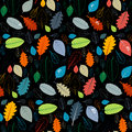 Seamless Black Pattern With Colorful Autumn Leaves Royalty Free Stock Image