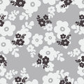 Seamless black white color cute flower pattern illustration background Stock Image