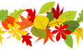 Seamless border with autumn leaves Stock Images