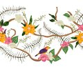 Seamless border with tropical birds, plants and flowers. Exotic flora and fauna. Royalty Free Stock Photo
