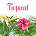 Seamless border with tropical leaves and flowers. Palms branches, bird of paradise flower, hibiscus Royalty Free Stock Photo