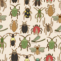 Seamless bug pattern Stock Image
