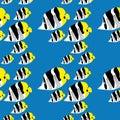 Seamless butterflyfish pattern Royalty Free Stock Photo