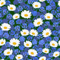 Seamless camomiles and cornflower pattern Royalty Free Stock Photos