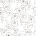Seamless citrus pattern. Fruit vector background. Black and white background with lemon and orange. Natural and healthy