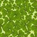 Seamless clover background illustration Royalty Free Stock Photo