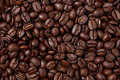 Seamless Coffee Bean Background Stock Images
