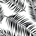 Seamless color palm leaves pattern. Flat style. Black and white Royalty Free Stock Photo