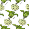 Seamless color pattern with kohlrabi