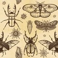 Seamless color pattern: set of insects, butterflies, bugs, larvae. A background - imitation of old paper.