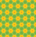 Seamless colorful floral pattern background Stock Image