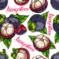 Seamless colorful mangosteens