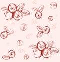 Seamless cranberry pattern