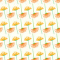 Seamless dandelion light flower background pattern Royalty Free Stock Photo