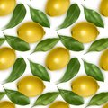 Seamless Endless Pattern with Print of Fresh Lemons, Lemon and leaves in realistic style on white background. Can be used in food