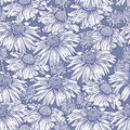 Seamless  floral background with marguerite, camomile Royalty Free Stock Photo