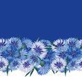 Seamless floral border with blue flower Royalty Free Stock Image