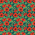Seamless floral botanical pattern hand drawn realistic poppy flowers green leaves buds, dark background, exquisite feminine.calico