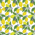 Seamless floral pattern background,  lemons,  berries on a white background. Royalty Free Stock Photo
