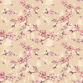 Seamless floral pattern with cherry blossom texture on beige Royalty Free Stock Photo
