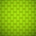 Seamless floral pattern green and summer seasonal vector background lace design abstract vintage geometric wallpaper vector Royalty Free Stock Images