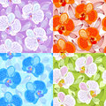 Seamless floral pattern with orchids Stock Images