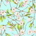 A seamless floral pattern with an ornament of an apple tree branch with the tender pink blooming flowers and green leaves, painted Royalty Free Stock Photo