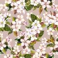 Seamless floral retro pattern with cherry flower - sakura blossom. watercolour artwork