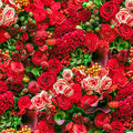 Seamless flower background abstract of flowers close up Stock Images