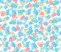 Seamless flower colour pattern. Floral background