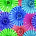 Seamless flower gerbera patter plus eps vector file Royalty Free Stock Image