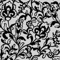 Seamless flower lace pattern this is file of eps format Stock Image