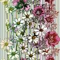 Bezšvový kvetina vzor