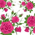 Seamless Flower Pattern. Vintage Pink Roses with Green Leaves. Floral Decorative Seamless Background for Wedding