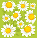 Seamless flowers pattern Royalty Free Stock Photo