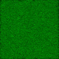 Seamless fresh green grass lawn texture Stock Image