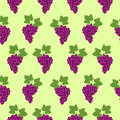 Seamless fruits vector pattern, bright color background with grapes and leaves, over light green backdrop